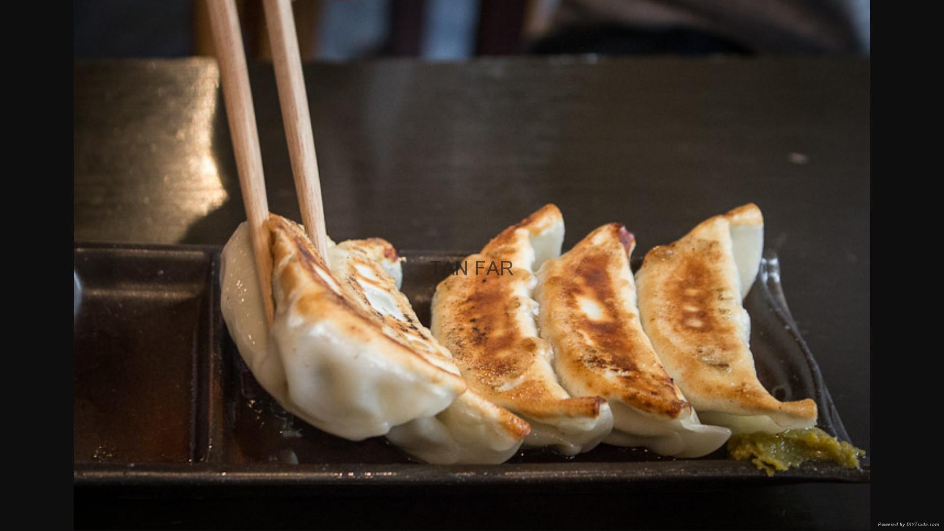 日本龙煎饺子炉   电加热 两板或单板型号 10
