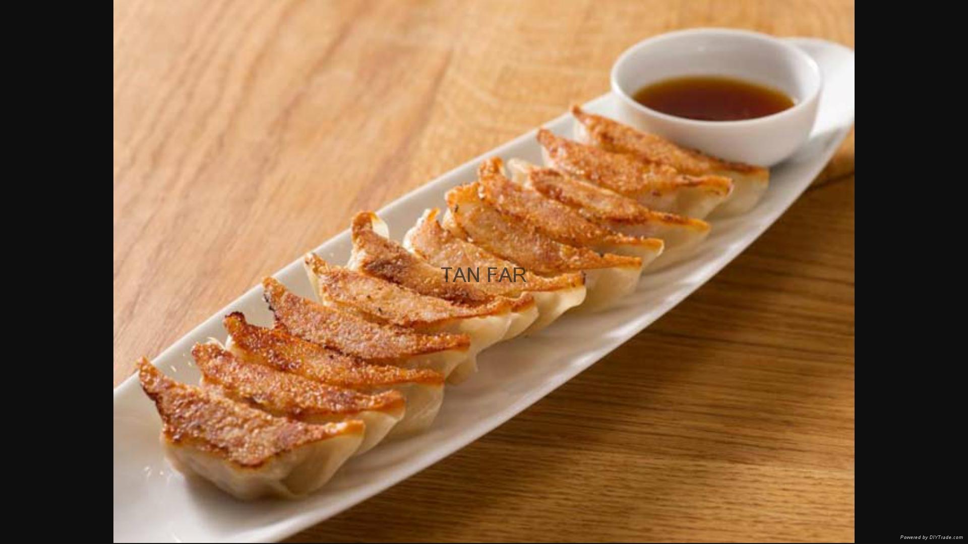 日本龙煎饺子炉   电加热 两板或单板型号 12