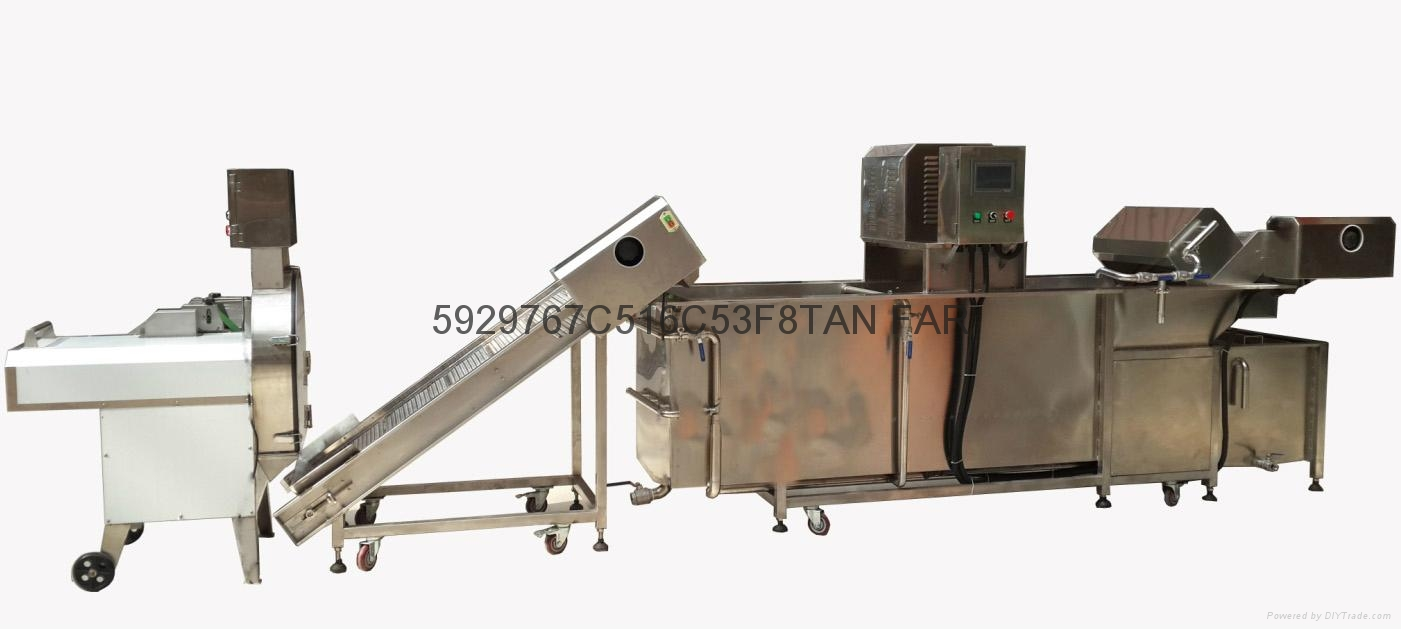 C-305 Vegetable Cutter 11