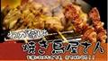 HIGO GRILL 日本炭火自動迴轉燒烤爐  二手 4
