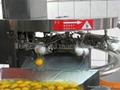 大型自動打蛋機
