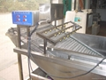 Bubble type vegetable Washer