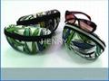 eva sunglasses case