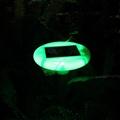 Smart Home Solar Mole Repeller