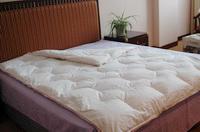 100% Cotton  Down Comforter