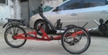 B.W Suspension Recumbent Trike