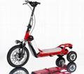 Electric Bikeboard