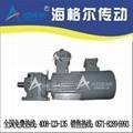 雙螺杆泵專用減速機