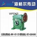 WPDKS Worm Gear Speed Reducer
