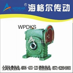 WPDKS Worm Gear Speed Reducer
