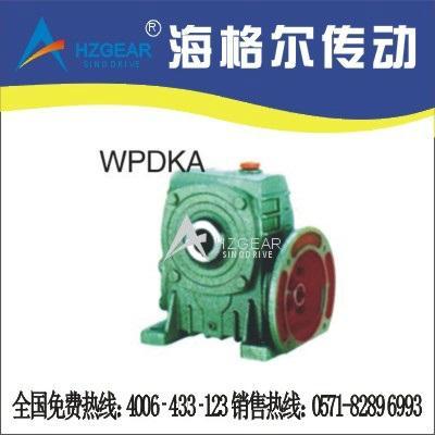 WPDKA Worm Gear Speed Reducer 1