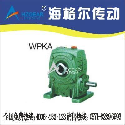 WPKA Worm Gear Speed Reducer 1