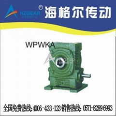 WPWKA Worm Gear Speed Reducer