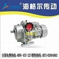 MBW04-C5-DS7124-0.37KW无极变速器