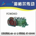 FCWDKO Worm Gear Speed Reducer