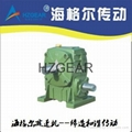 WORM REDUCER(OEM MANUFACTURE)