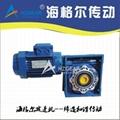 Worm Shaft Reducer RV90