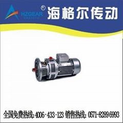 WBE1065LD微型擺線針輪減速機 微擺雙極