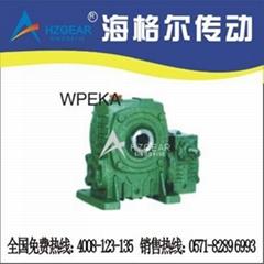 WPEKA、FCEKA型双极冶金蜗轮减速机