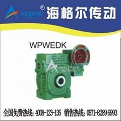 WPEDKA、FCEDKA型孔式双极蜗轮蜗杆减速机
