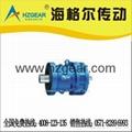 BL/XL0-11 Cyclo Drive Reducer