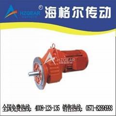 Helical geared  motor RXF Series