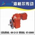 FFS斜齒輪減速電機