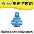 SWL50-1B-Ⅳ-558.8/MORGAN/JOYCE