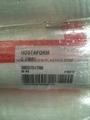 HOSTAFORM C13031