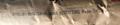ZYTEL RS78G33FHS