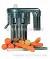 citrus Juicer 3