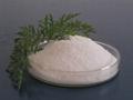 絮凝劑聚丙烯酰胺PAM 2