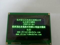 256128点阵大尺寸OLED屏