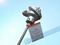 PT100熱電阻 廠家直銷