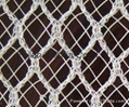 Hail nets(netting)