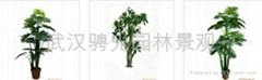 武漢仿真植物