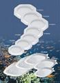 Porcelain plate,Ceramic plate, Soup plate,tableware,chinaware,dinnerware. 3