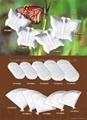 中国陶瓷餐具 5