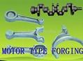 MOTOR TYPE FORGING