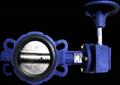 butterfly valve API609