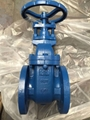GATE VALVE PRODUCTS