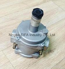 Natural gas regulator with filter