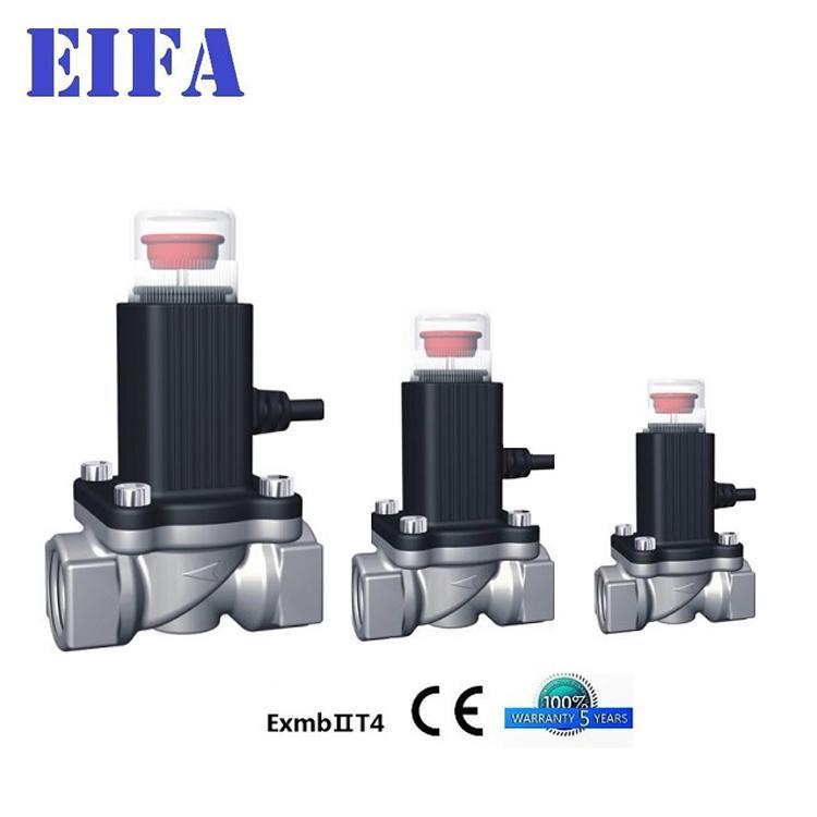 Top quality Natural Gas Solenoid Va  e 3