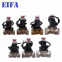 Top quality Natural Gas Solenoid Valve (Hot Product - 1*)