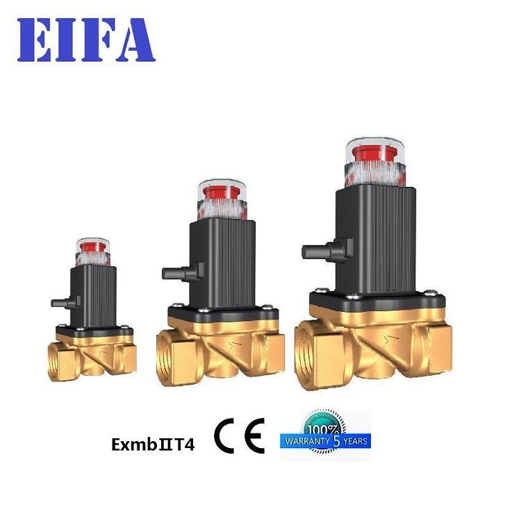 3 years quality guarantee Gas Solenoid Va  e 3