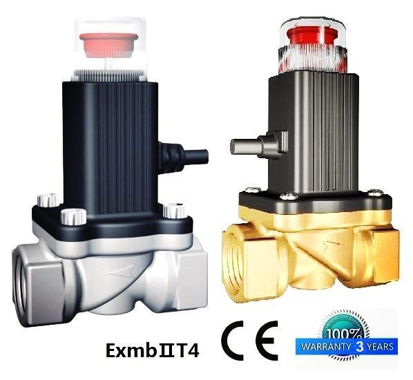 5 years quality guarantee Natural gas solenoid va  e  1