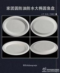 家團圓大橢圓盤紙漿餐具