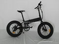 20'' foldable electric fat bike