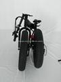 20'' foldable electric fat bike