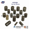 Fe6 Double coil Spring Washer 3